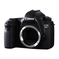 Canon EOS 6D MKII + 24-135mm IS STM 1